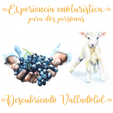 """""""Descubriendo Valladolid""""..."""